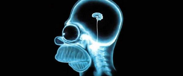 Sites para exercitar o seu cérebro