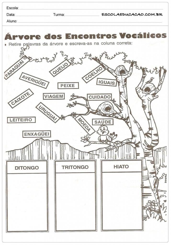 Atividades de Português 4º ano - Encontro Vocálicos