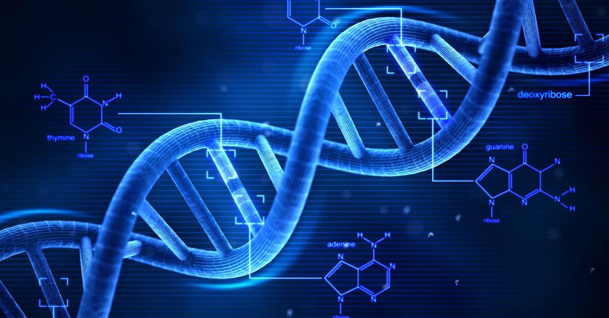 A genética e os genes