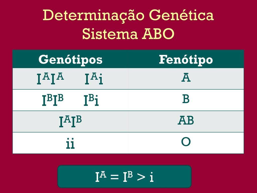 Sistema ABO - Genótipos e fenótipos sanguíneos