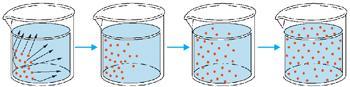 Difusão de soluto em um Becker com água
