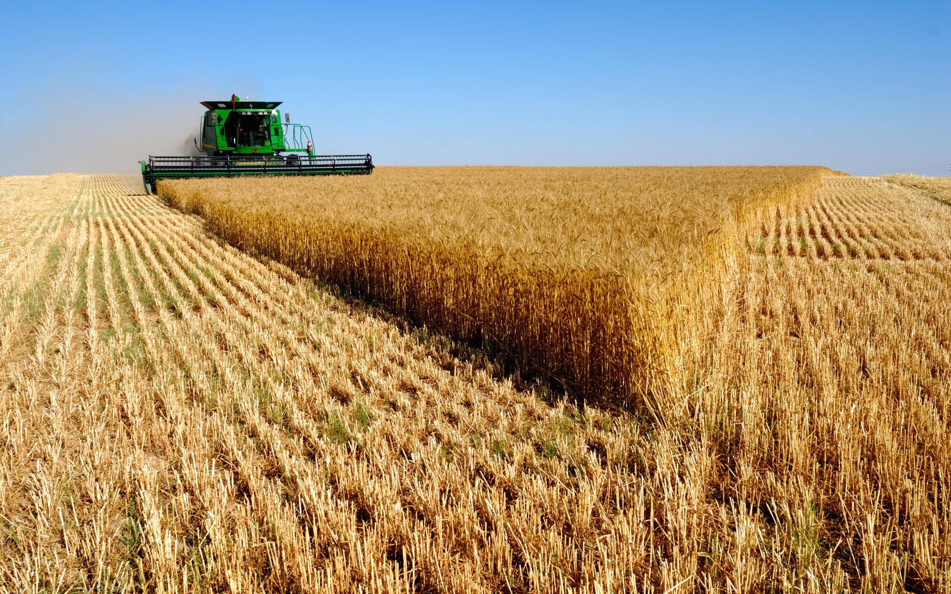 A evolução das técnicas agrícolas
