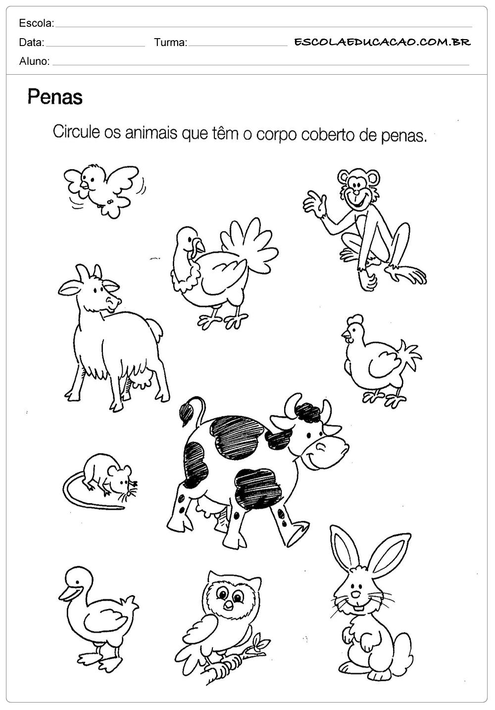 Atividade de Ciências – Circule os Animais – Para Imprimir