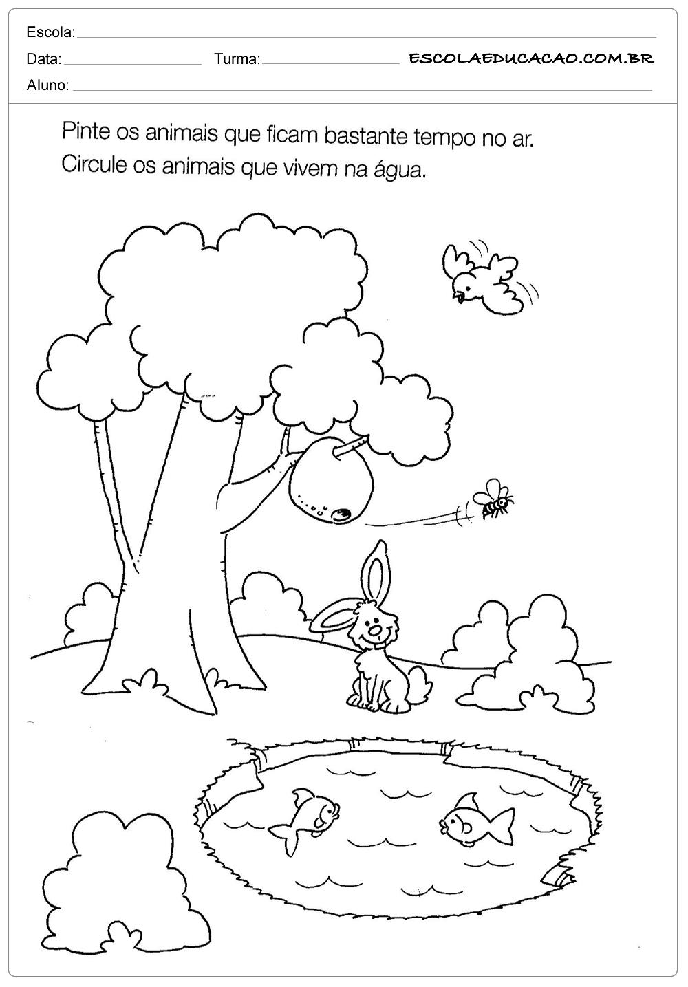 Atividade De Ciências Para Educação Infantil Circule Os Animais