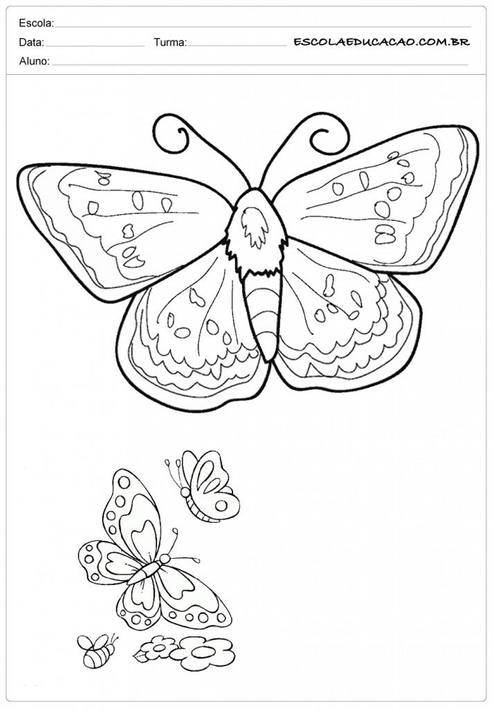 Atividades e Desenhos de Animais para Colorir - Borboletas