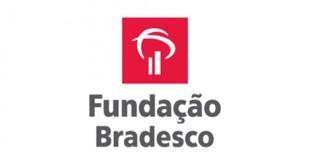 Cursos Grátis Fundação Bradesco