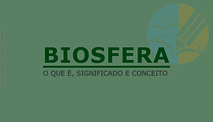 Tudo sobre a Biosfera