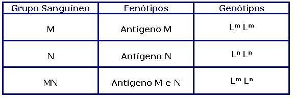 Genótipos e fenótipos do sistema MN