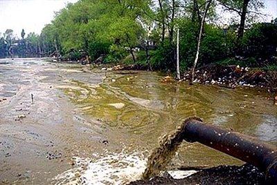 Poluição nos Rios
