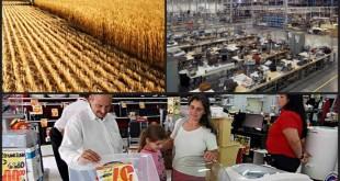 Os Setores da Economia e suas características