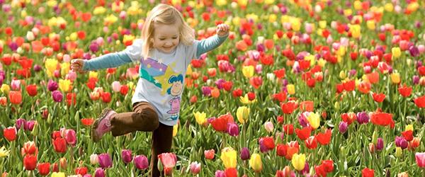 Atividades sobre a Primavera