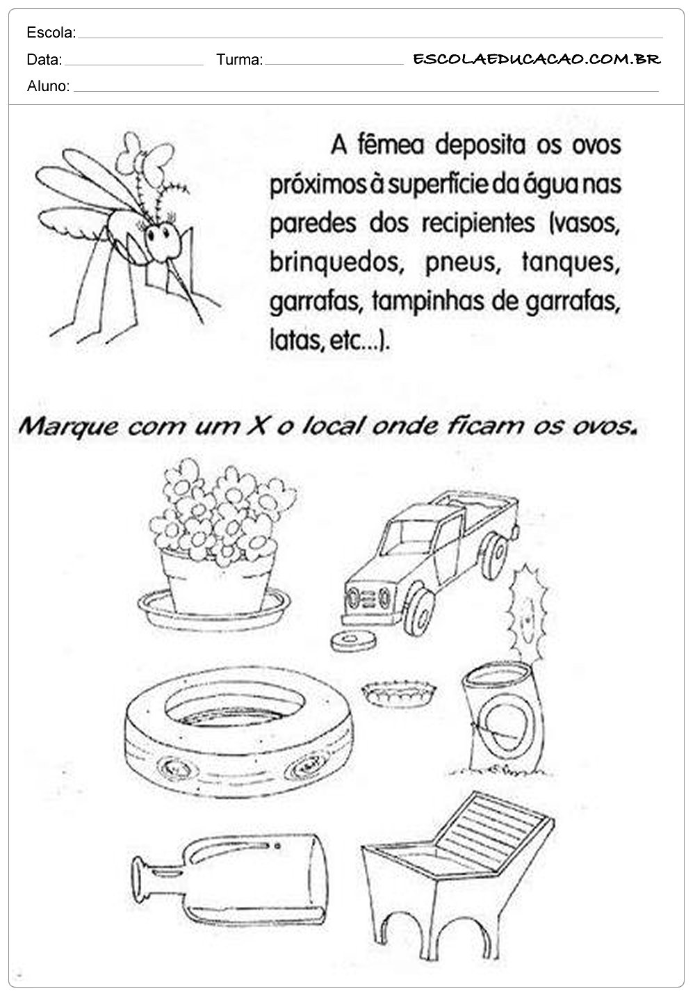 História da Dengue – Atividades sobre a Dengue