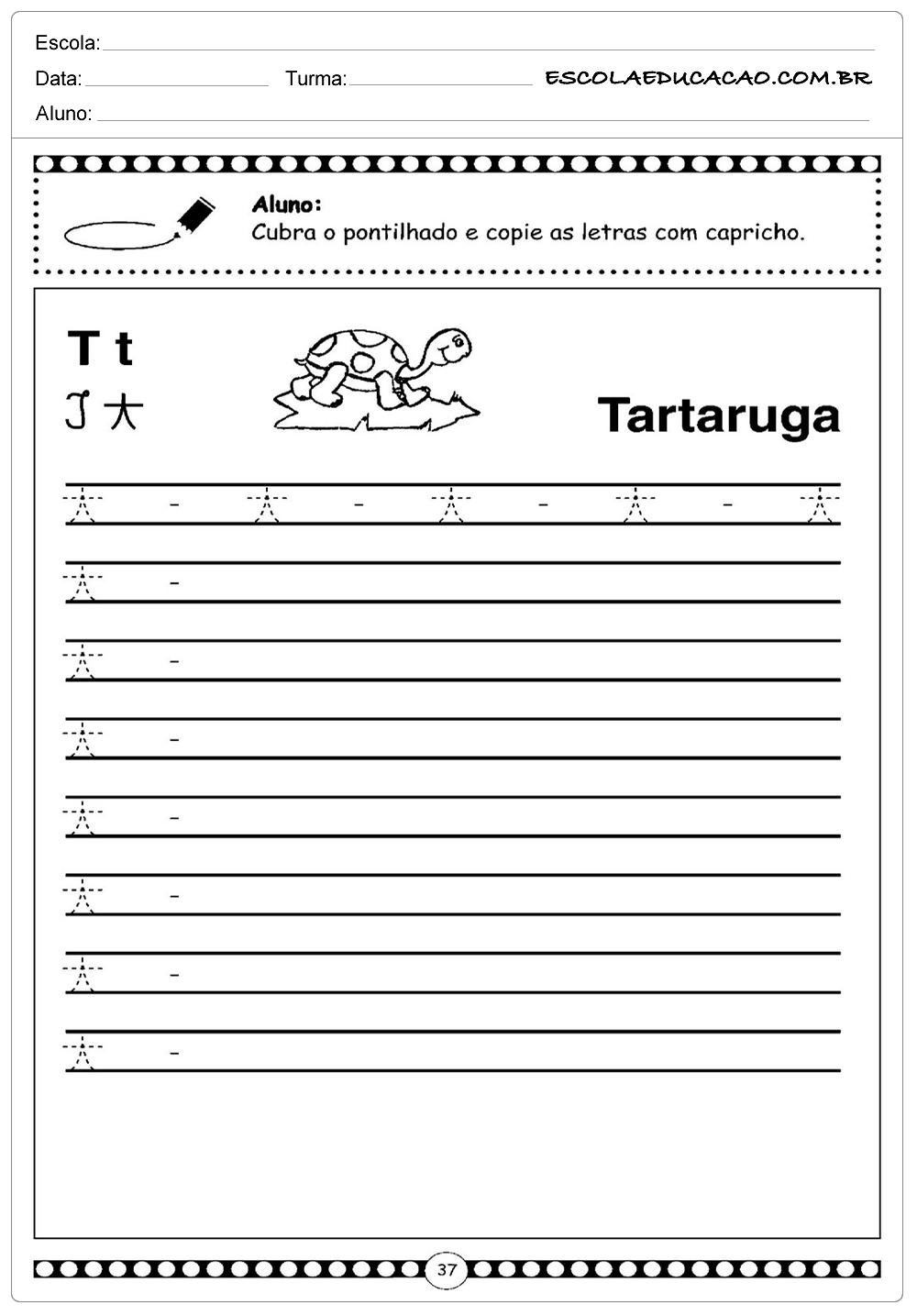 Atividade Letra T – Tartaruga