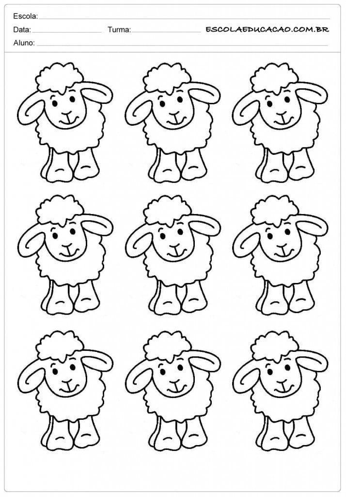 9 ovelhas de frente