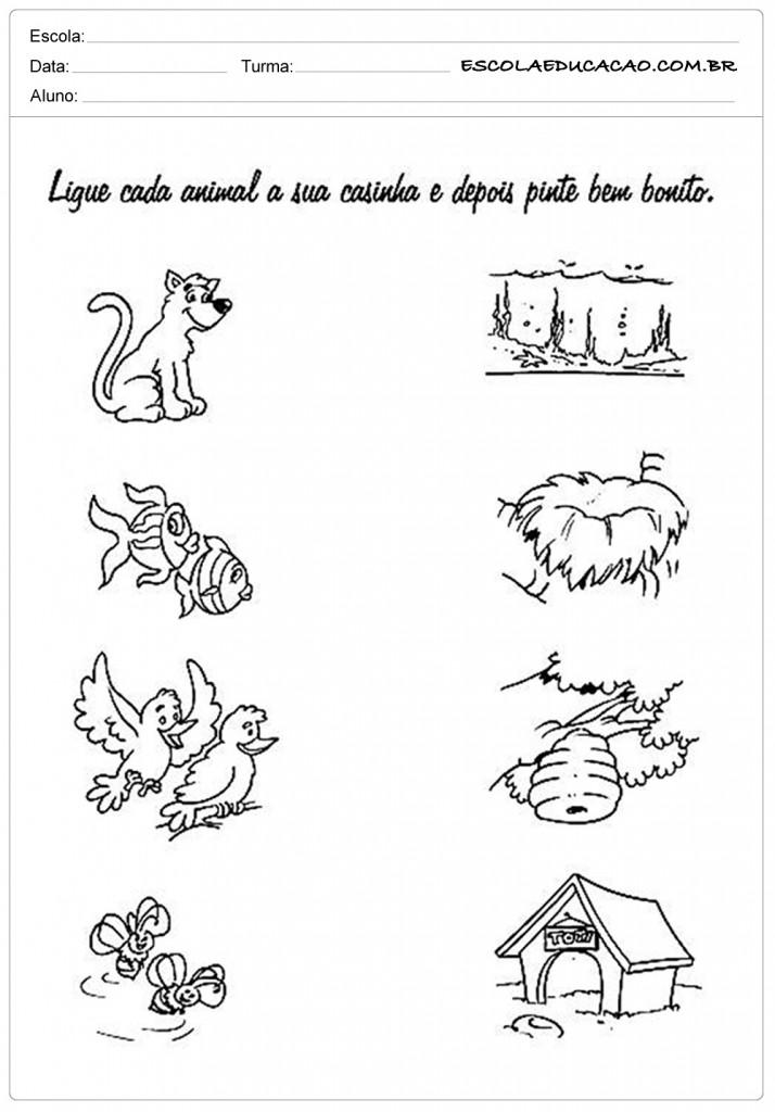 Atividades de Classificação e Seriação - Ligue cada animal