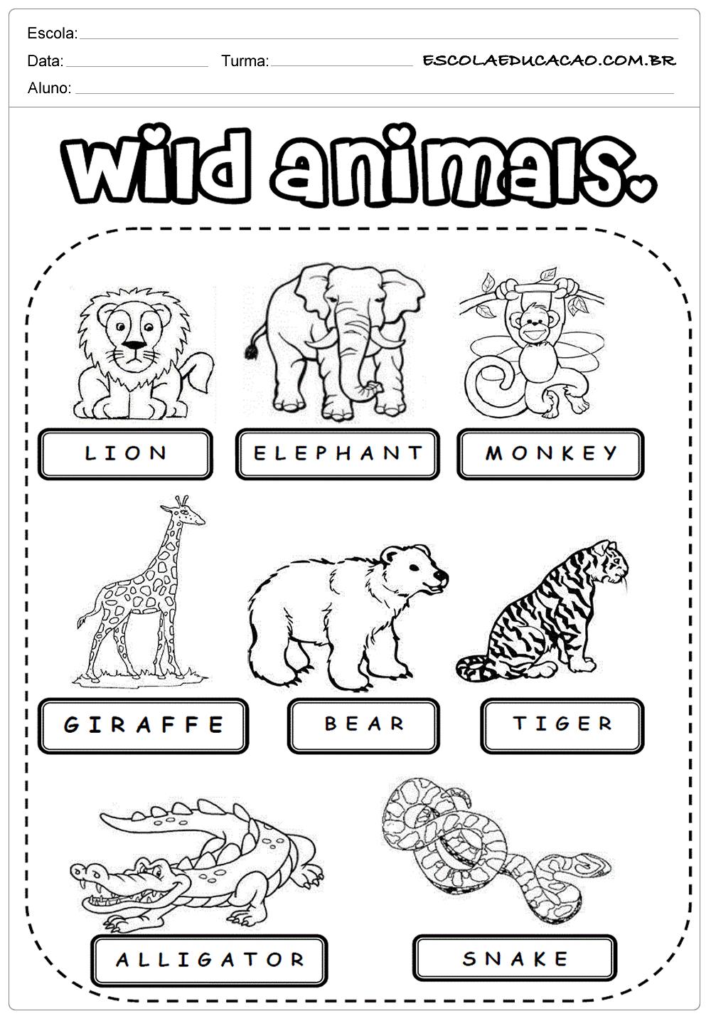 Atividades de Inglês 2º ano - Animais - Escola Educação