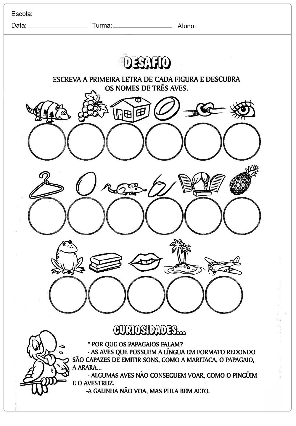Atividades sobre meio ambiente para educação infantil – Aves do brasil