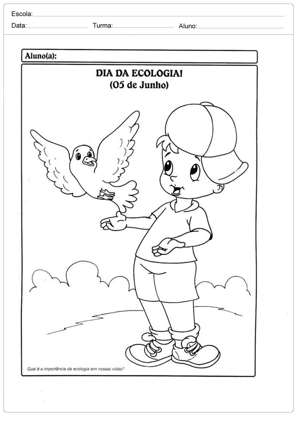 Atividades sobre meio ambiente para educação infantil – Dia da ecologia