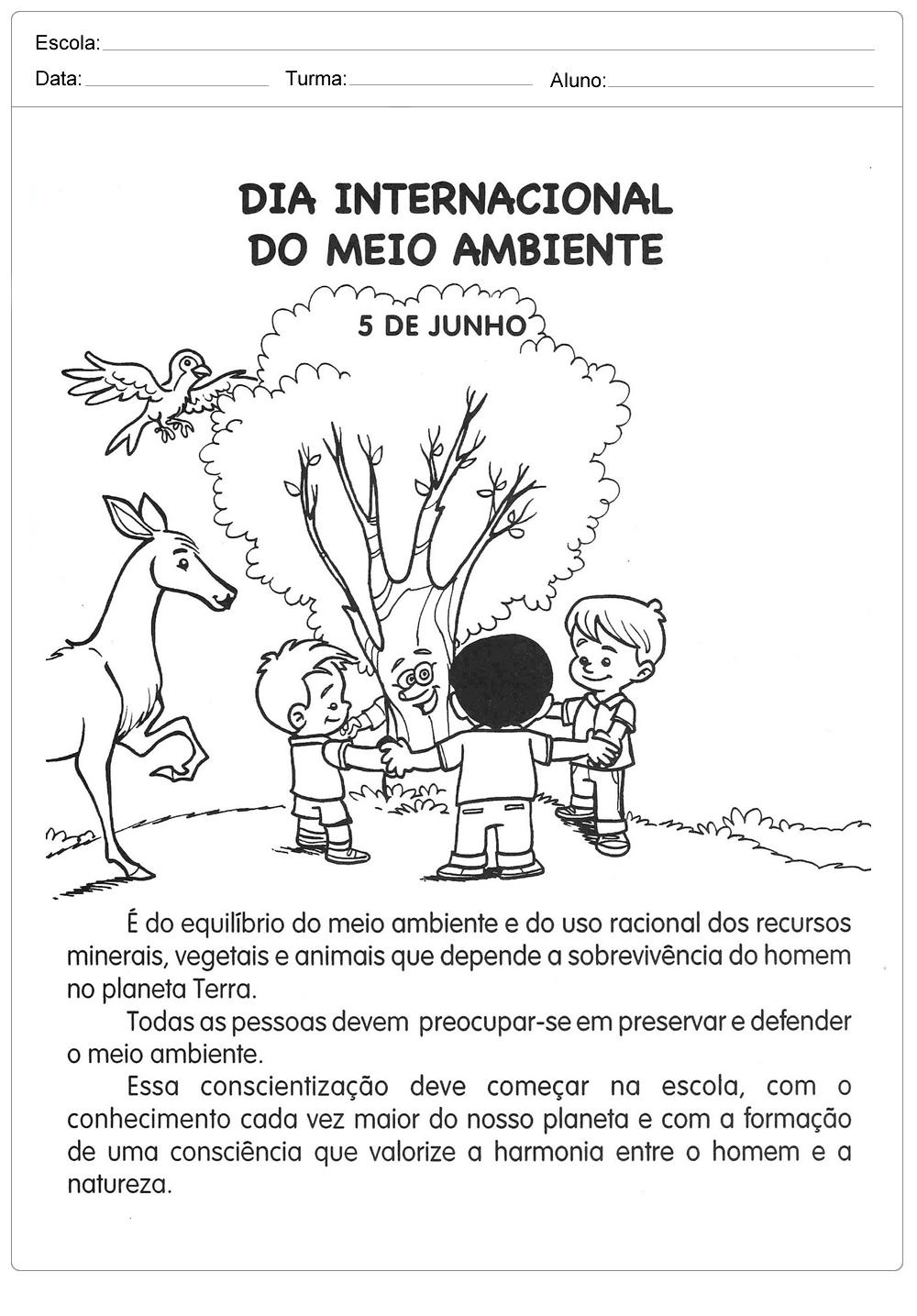 Atividades sobre meio ambiente para educação infantil – Dia internacional do meio ambiente