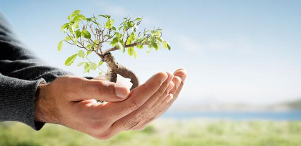 Atividades sobre meio ambiente