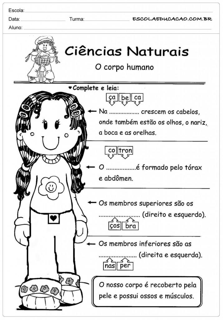 Atividades sobre o corpo - Ciências Naturais