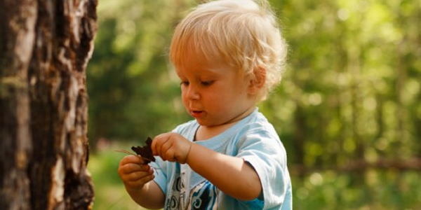 Natureza e Sociedade na Educação Infantil