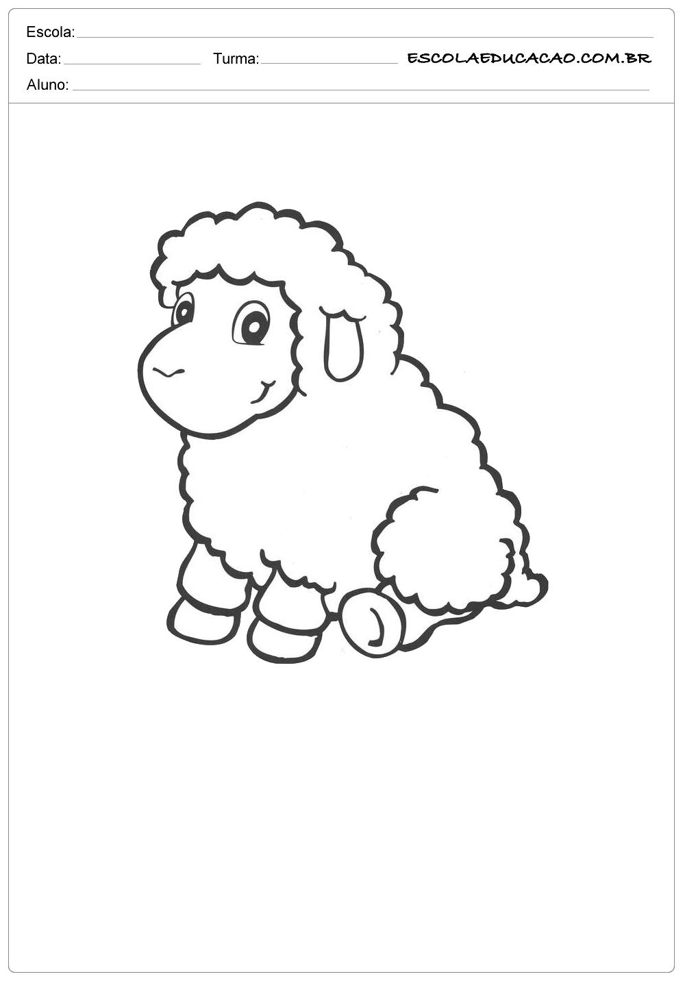 ovelha sentada