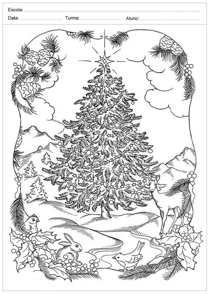 Árvores de Natal para Colorir - Belíssima Árvore
