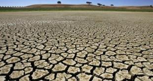 Desertificação - Foto