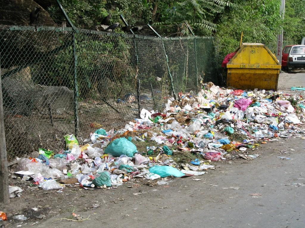 Poluição dos Solos - Descarte de Lixo