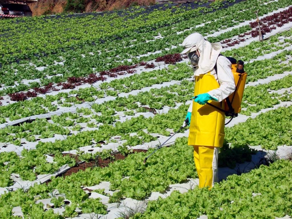 Poluição dos Solos - Meio Agrícola