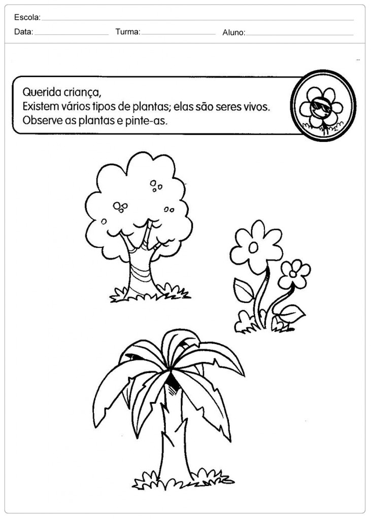 Atividades Sobre os Seres Vivos - Pinte as Plantas bem Bonito