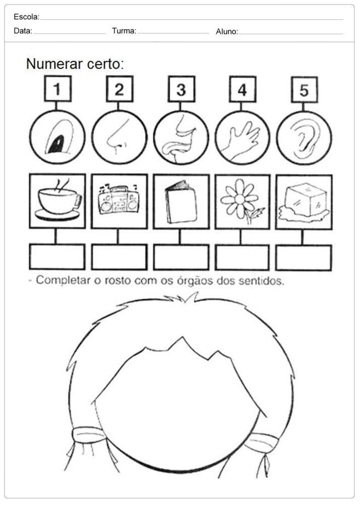 Fabuloso Atividades sobre os Cinco Sentidos na Educação Infantil Para Imprimir VL21