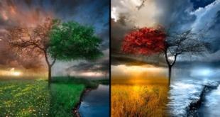 Atividades sobre estações do ano e clima