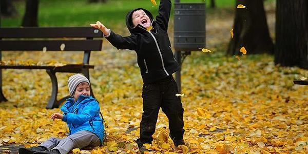 Para entender melhor as estações do ano e aprender brincando, preparamos as melhores atividades sobre o Outono:
