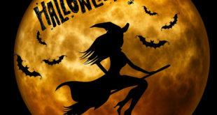 Projeto Halloween na Escola para Educação Infantil e Ensino Fundamental