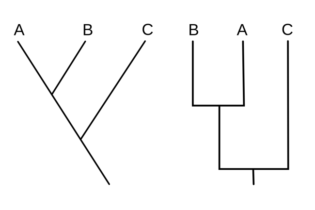 Exemplo de cladogramas simples