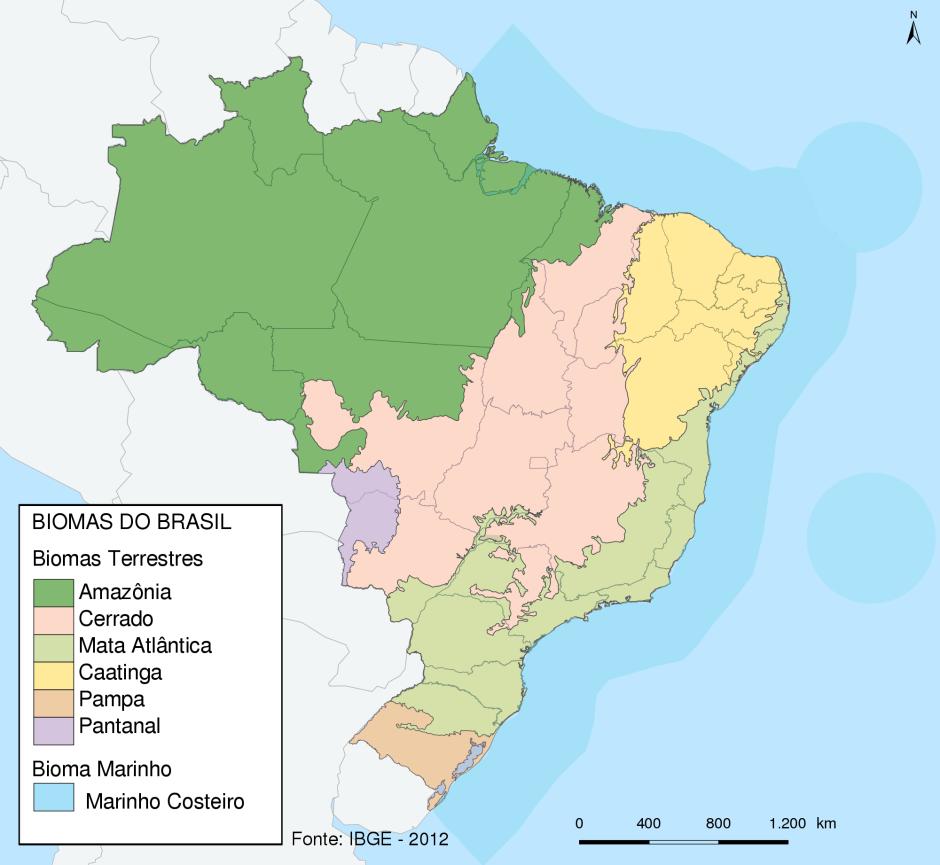 Caatinga em amarelo, evidenciando suas fronteiras com Cerrado e Mata Atlântica