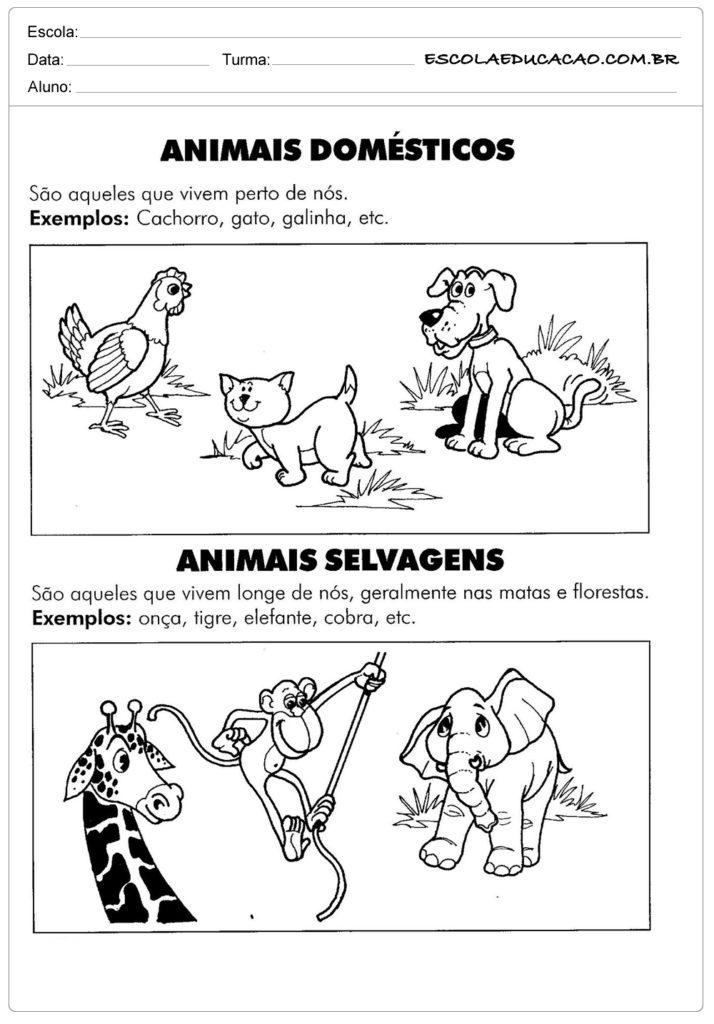 Extremamente Atividades sobre animais - Atividades Educativas - Escola Educação SX15