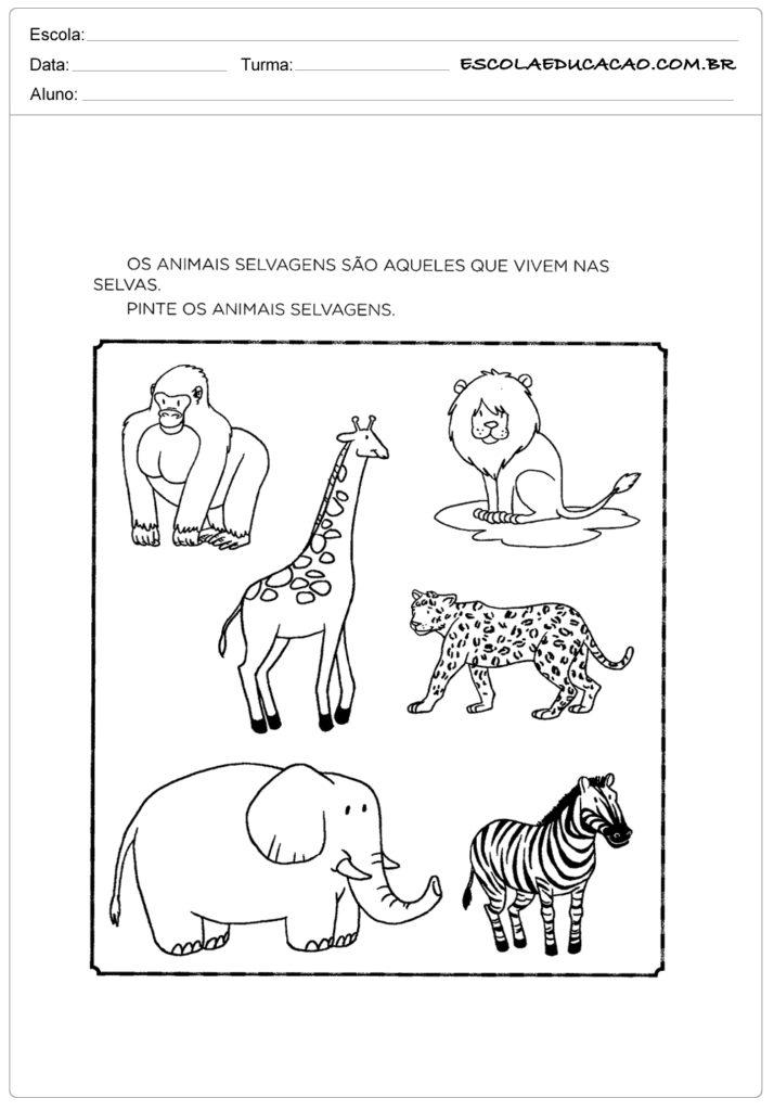 Atividades Sobre Animais Atividades Educativas Escola Educação