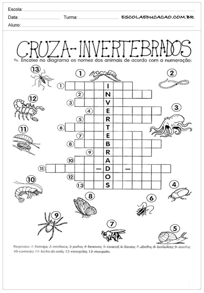 Atividade de ciência cruza invertebrados