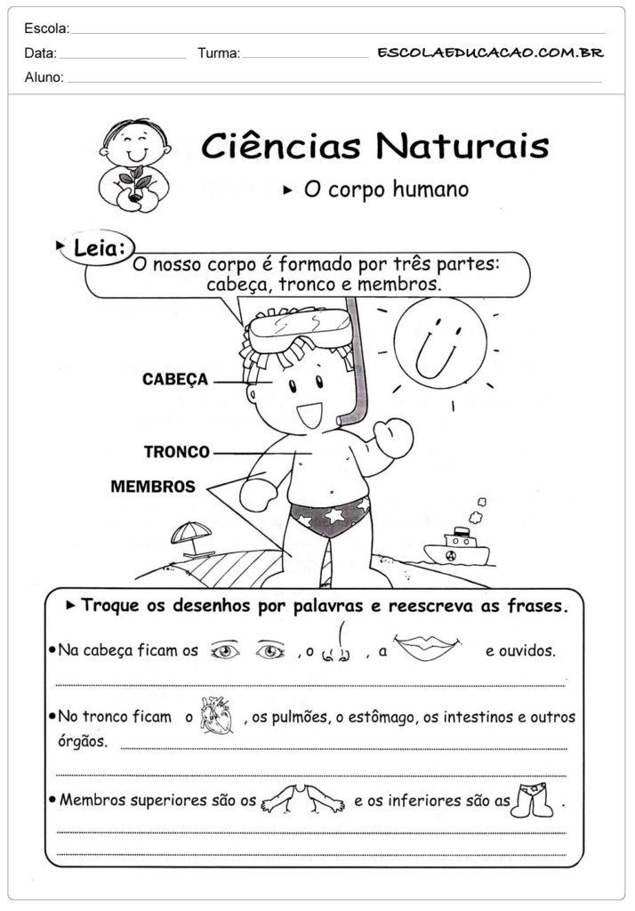 Atividades de ciência naturais
