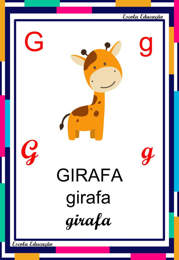 Alfabeto Ilustrado - Letra G