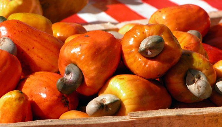 Você sabe quais frutas são originais do Brasil?
