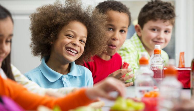 Projeto Dia do Estudante para Educação Infantil e Ensino Fundamental