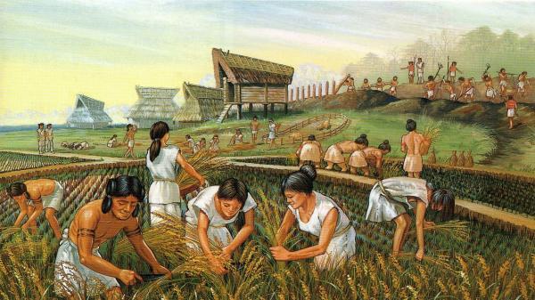 O que foi a Revolução Agrícola?