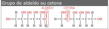 grupo de aldeído ou cetona