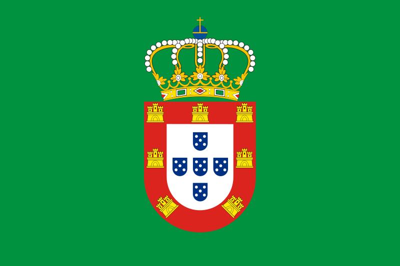 Sétima bandeira brasileira: Bandeira de D. Pedro II de Portugal