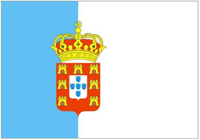 nona bandeira brasileira: Bandeira do Regime Constitucional