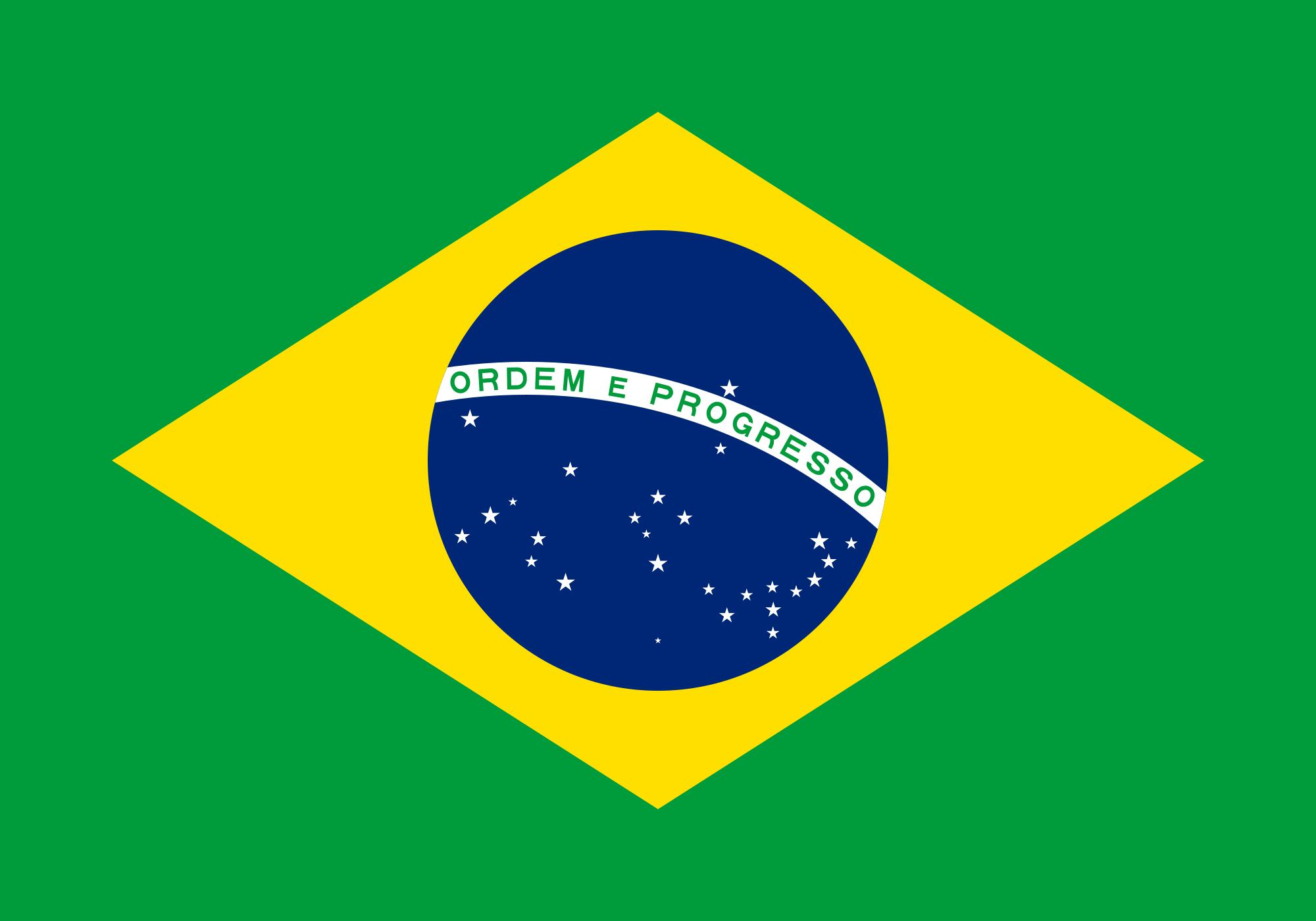 Décima segunda bandeira: Bandeira nacional